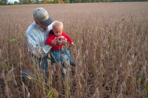 bean-field-generations