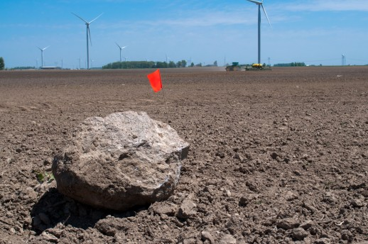 rock in field